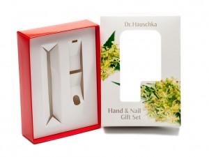 DP_0612-piece-box-with-die-cut-insert_sm-11