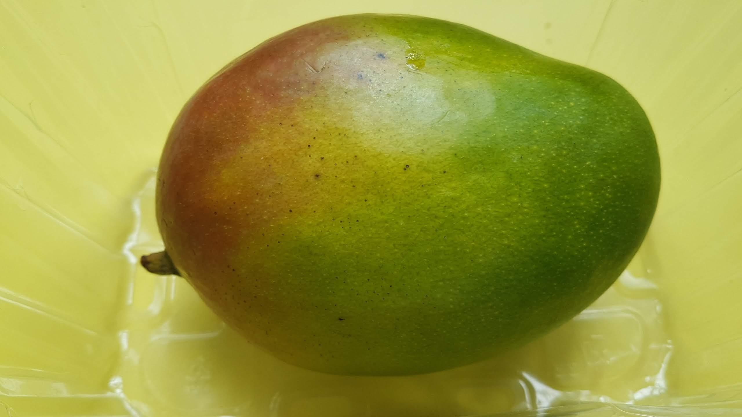 plastic fruit packaging
