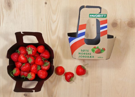 sustainable strawberry carton