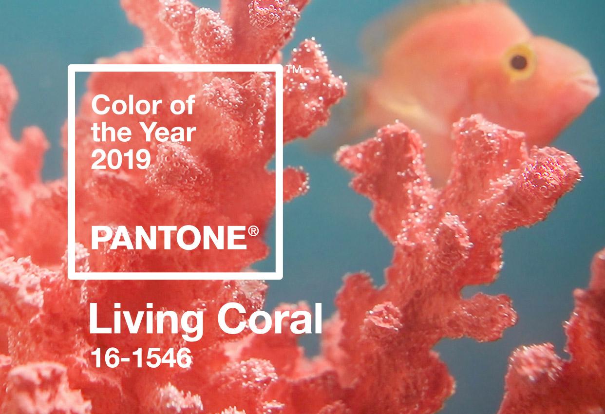 living coral pantone colour